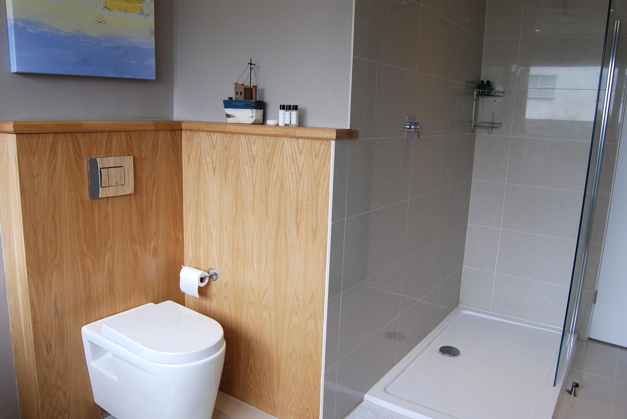Building Modernization at Gwelanmor toilet